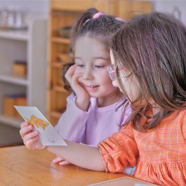 İletişim | Çitlembik Montessori Anaokulu